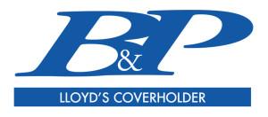 B&P lgo linkedin